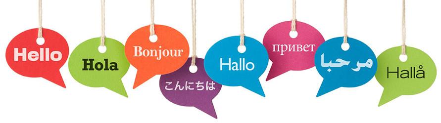 Traducciones especializadas